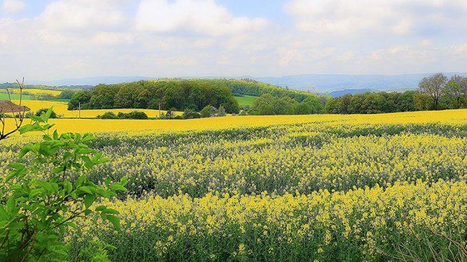 Kwietniowe prace w gospodarstwie rolnym