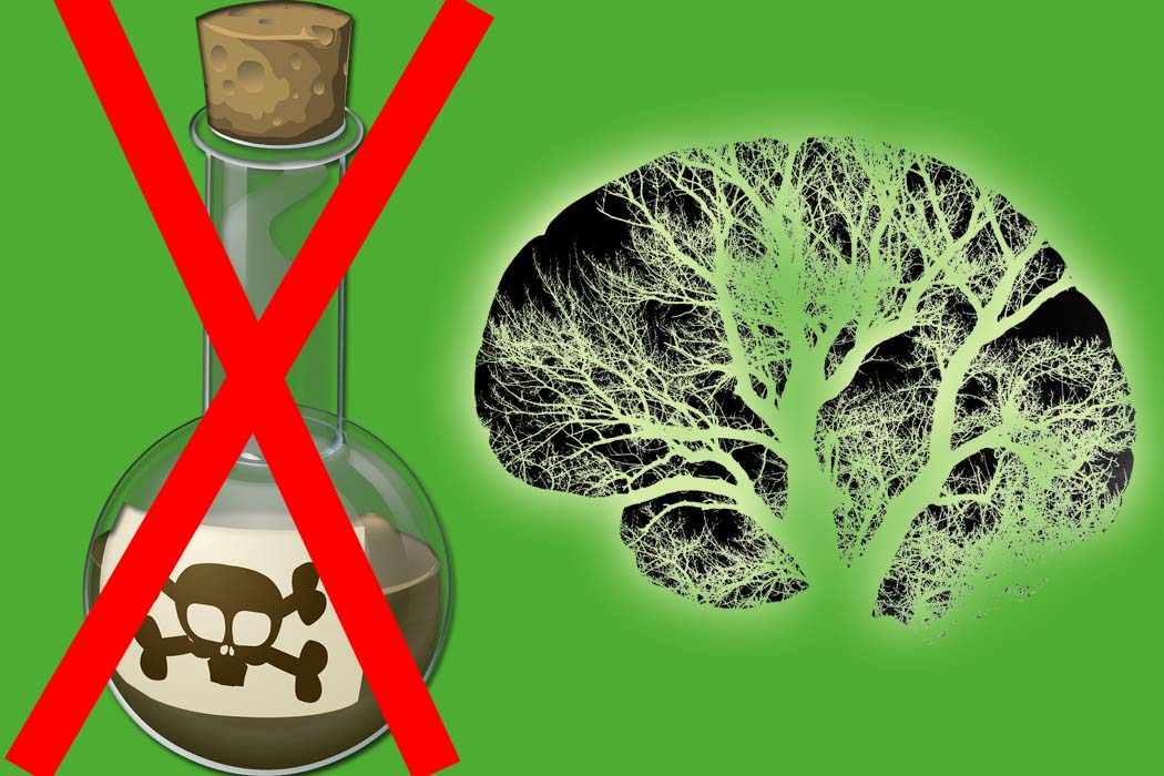system ochrony roślin