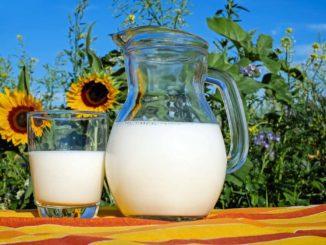 ceny mleka