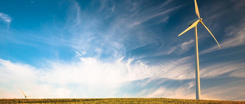Odnawialne źródła energii – sposób na modernizację gospodarstwa rolnego i zmniejszenie kosztów produkcji