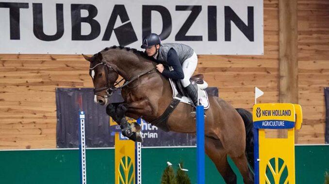 Jak wybrać konia reproduktora ujeżdżeniowego, skokowego
